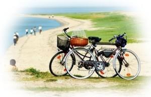 Online-Fahrradvermietung: 8 Tipps für eine erfolgreiche Website