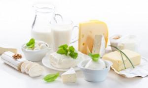 Wie kommt die Milch auf den Tisch? Online-buchbare Gästeführungen geben Antwort